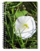 White Glow Spiral Notebook