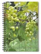 White Graspes Spiral Notebook