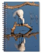 White Heron In The Looking Glass Spiral Notebook