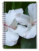 White Hibiscus Trio Waikiki Spiral Notebook