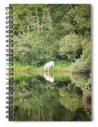White Horse Drinking Water Spiral Notebook