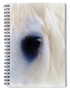 White Horse Look Spiral Notebook