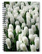White Hyacinths Spiral Notebook
