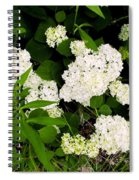 White Hydrangia Beauty Spiral Notebook