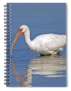 White Ibis Spiral Notebook