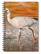 White Ibis Stroll Spiral Notebook
