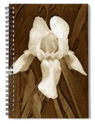 White Iris Spiral Notebook
