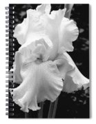 White Iris Spiral Notebook
