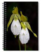 White Lady's Slipper Pair Spiral Notebook