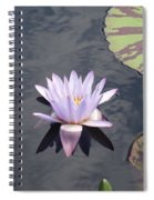 White Light Blue Tiped Waterlily Spiral Notebook