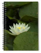 White Lilly Spiral Notebook