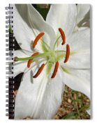 White Lily Spiral Notebook