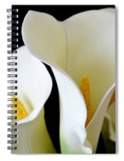 White Lily Trio Spiral Notebook