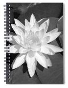 White Lotus 2 Spiral Notebook