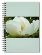 White Magnolia Elegance Spiral Notebook