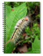 White Marked Tussock Spiral Notebook