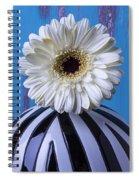 White Mum In Striped Vase Spiral Notebook