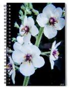 White On Black Spiral Notebook