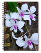 White Orchid Cluster With Hot Pink Spiral Notebook