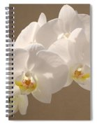 White Orchid Photograph Spiral Notebook