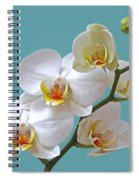 White Orchids On Ocean Blue Spiral Notebook