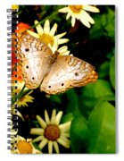 White Peacock Butterfly I I I Spiral Notebook