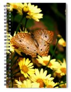 White Peacock Butterfly I I Spiral Notebook