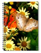 White Peacock Butterfly I V Spiral Notebook