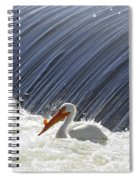 White Pelican Over The Dam Spiral Notebook