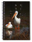 White Pelican Visitors To Gilbert Arizona Spiral Notebook