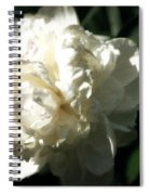 White Peony In Spring Spiral Notebook