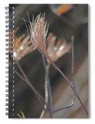 White Pine Branch Spiral Notebook