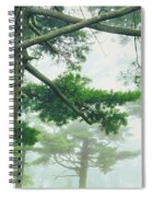 White Pine Trees, Wisconsin, Usa Spiral Notebook