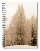 White Pines Spiral Notebook