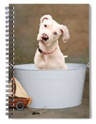 White Pitbull Puppy Portrait Spiral Notebook