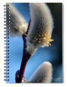White Pussy Willow In Bloom Spiral Notebook