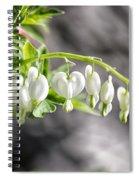 White Queen Spiral Notebook