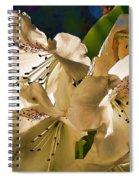 White Rhododendron Spiral Notebook