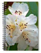White Rhododendrons Spiral Notebook