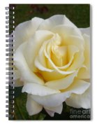 White Rose Named Ray Of Sun Spiral Notebook