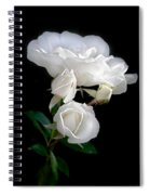 White Roses In The Moonlight Spiral Notebook