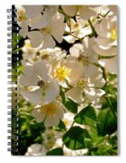 White Roses Spiral Notebook