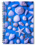White Sea Shells On Blue Board Spiral Notebook