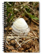 White Shell Spiral Notebook