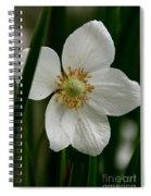 White Siberian  Spiral Notebook
