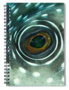 White-spotted Pufferfish Eye Spiral Notebook