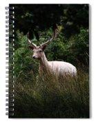 White Stag Spiral Notebook