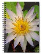 White Star Lotus Spiral Notebook