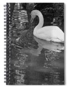 White Swan In Black And White II Spiral Notebook