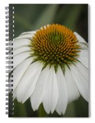 White Swan Spiral Notebook